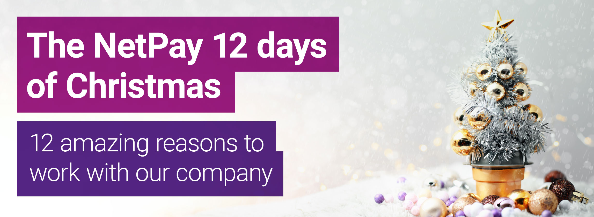 12 days of christmas why work with NetPay